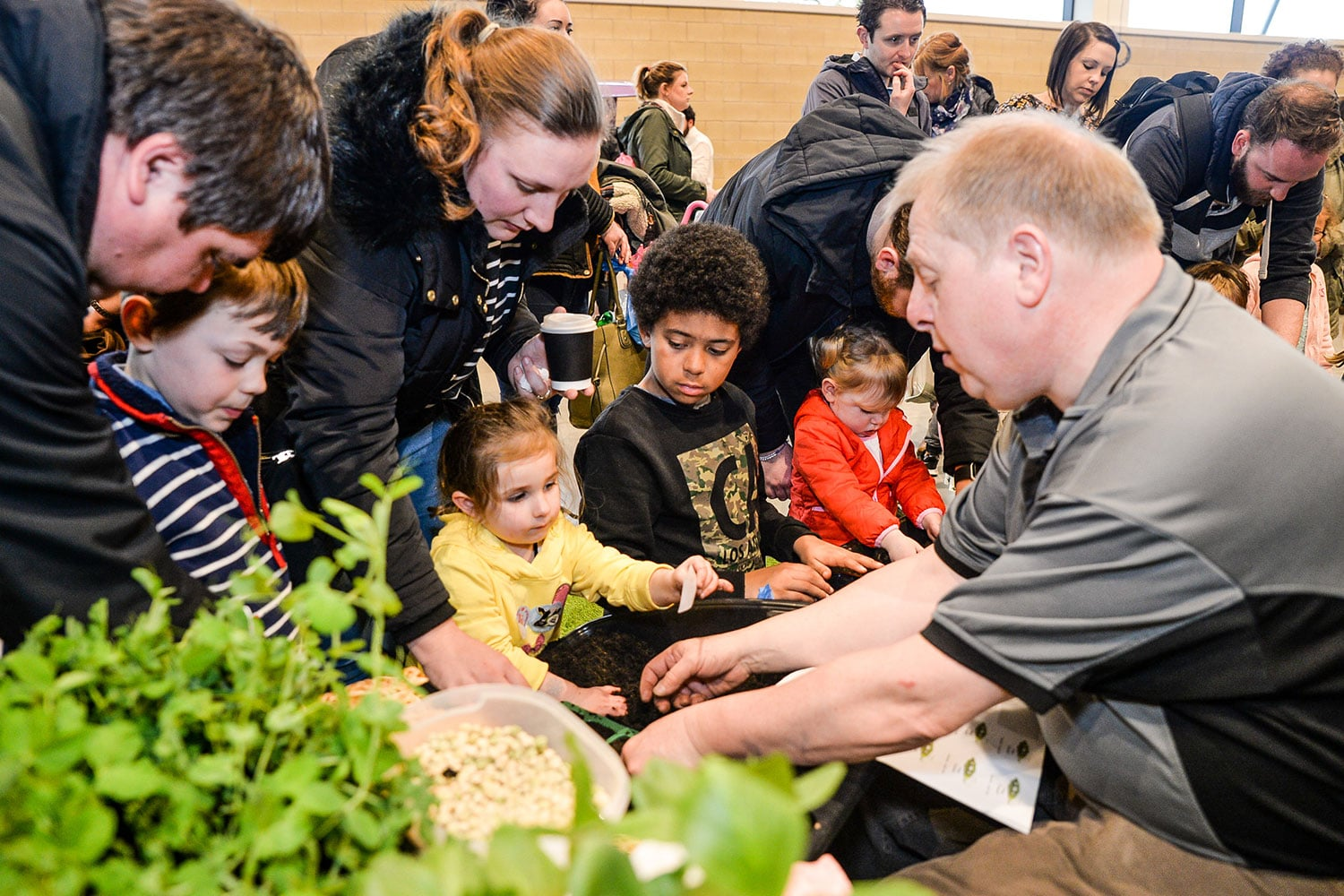 Children planting seeds at Springtime Live